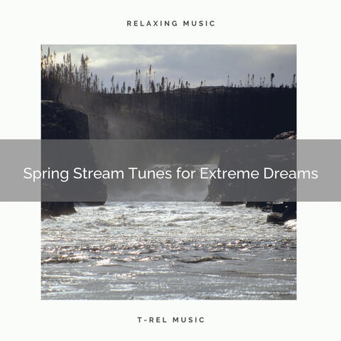1 Spring Stream Tunes for Extreme Dreams
