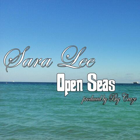 Open Seas (feat. Big Ceaze)