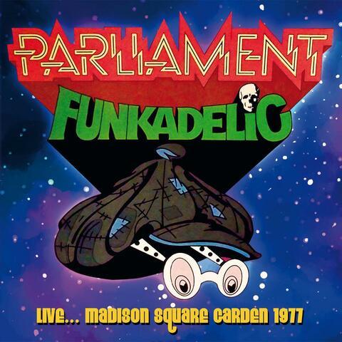 Live: Madison Square Garden, 1977