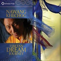 Tibetan Freedom Through Nonviolence and Compassion