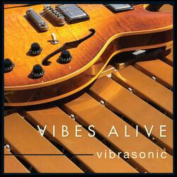 Vibrasonic
