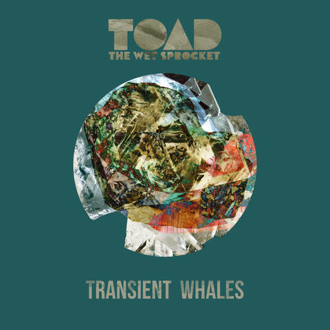 Transient Whales