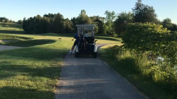 Golf carts will be allowed on Pelee Island with restrictions