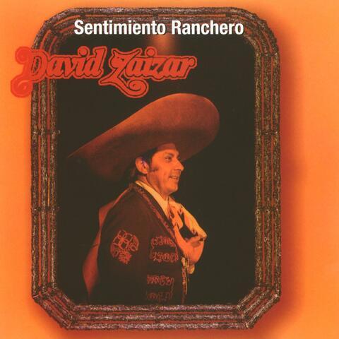 David Zaizar