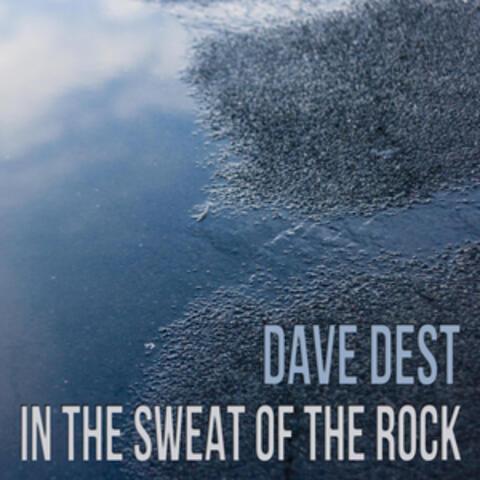 Dave Dest