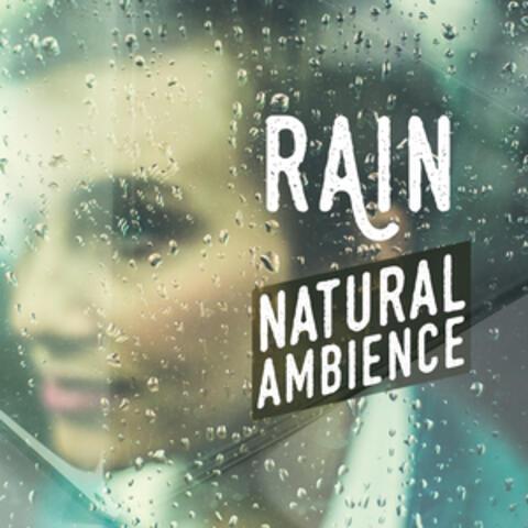 Ambient Rain
