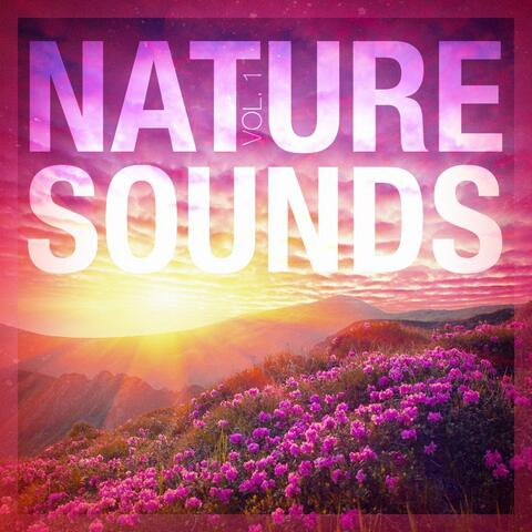 Sounds of Nature White Noise for Mindfulness