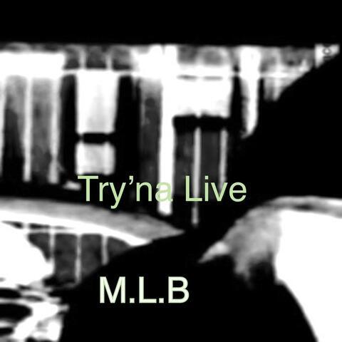 M.L.B