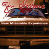 Until I Fall Away - Gin Blossoms
