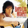 Party Crowd - David Lee Murphy