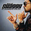 Angel - Shaggy & Rayvon