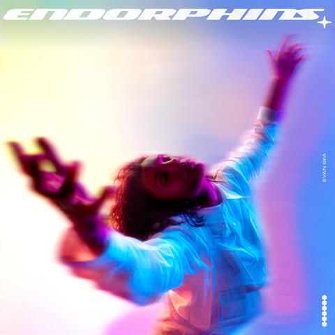ENDORPHINS album art