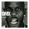 Party Up - DMX