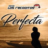 Perfecta - Banda los Recoditos