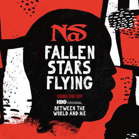Fallen Stars Flying album art