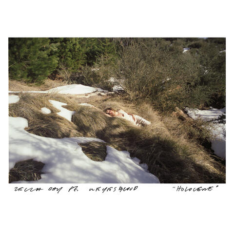 Holocene album art