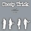 Ain't That A Shame - Cheap Trick