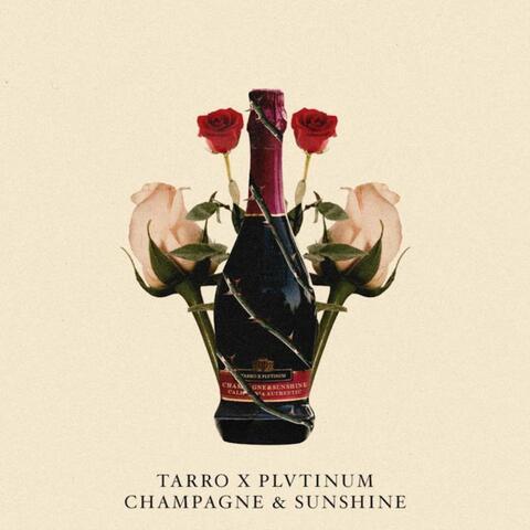 Plvtinum & Tarro