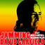 Jamming - David Garfield