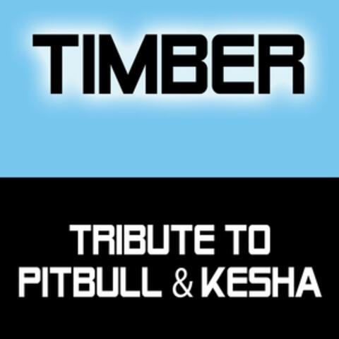 Tribute to Pitbull & Kesha