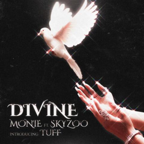 Divine album art