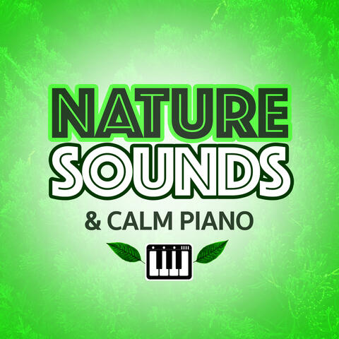 Piano Music Orchestra & Nature Sounds Sleep Music