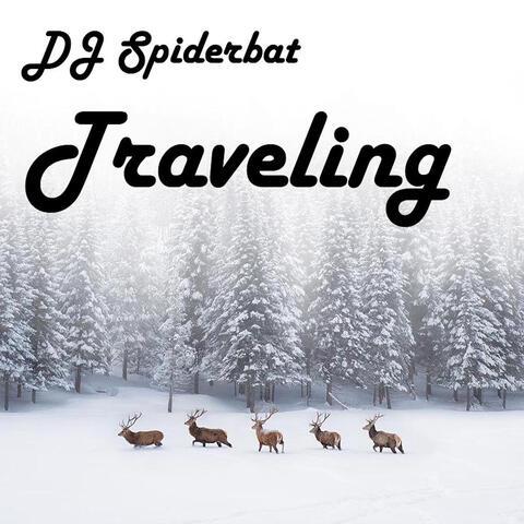 DJ Spiderbat
