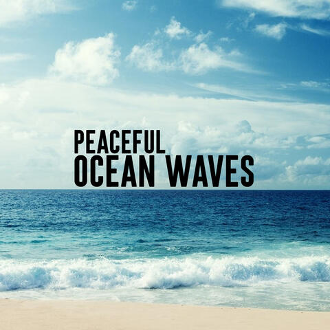 Ocean Waves Relaxation and Nature Sounds Lab