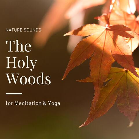 Mindful Mantra Music