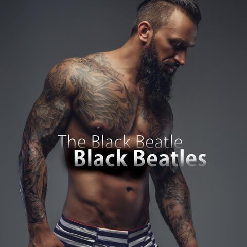 The Black Beatle