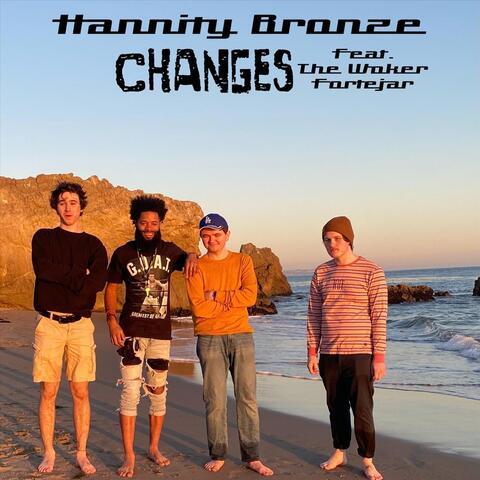 Hannity Bronze