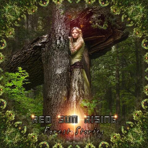 Forest Stories album art