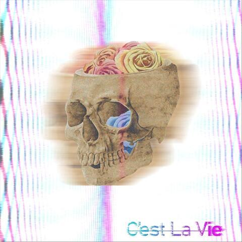 C'est La Vie album art