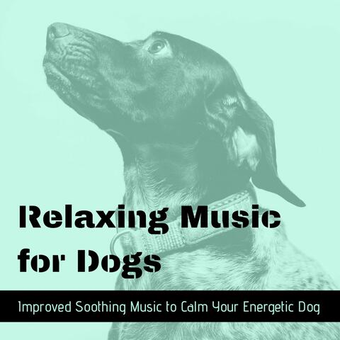 Relax for Life & Music for Dogs Collective