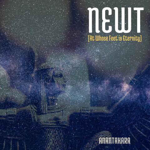 NWT (At Whose Feet Is Eternity) album art
