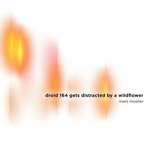 Droid 164 Gets Distracted by a Wildflower album art