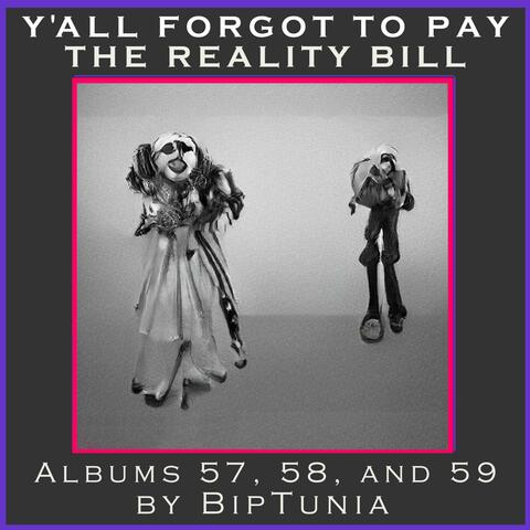 Y'all Forgot to Pay the Reality Bill album art