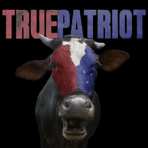 True Patriot album art