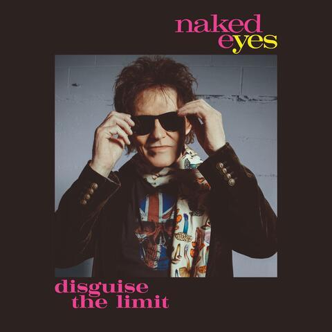 Disguise The Limit album art