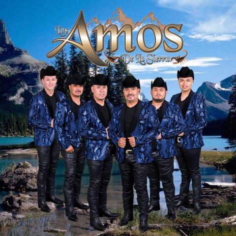 Promo 2021 album art
