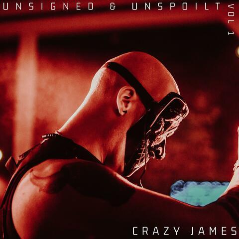 UNSIGNED & UNSPOILT VOL 1 album art