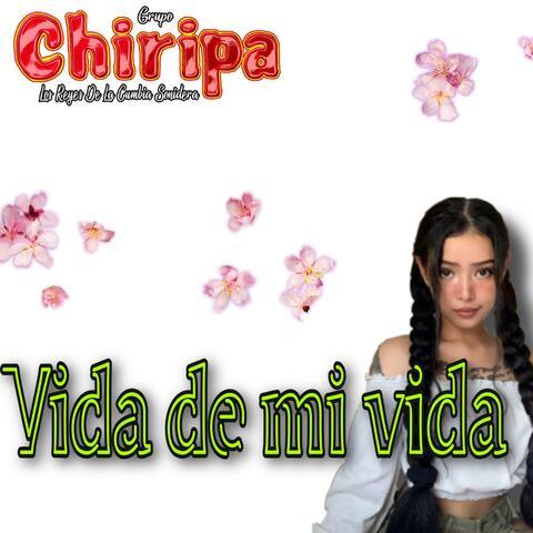 Vida De Mi Vida album art