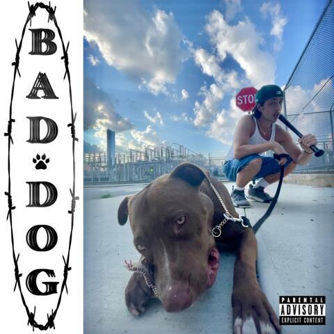 BAD DOG album art