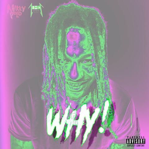 WHY! album art