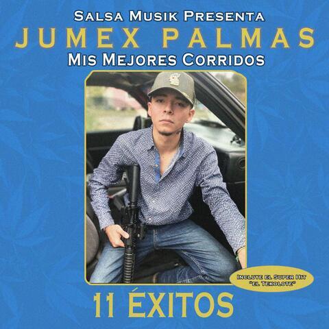 Jumex Palmas