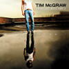 When The Stars Go Blue - Tim McGraw