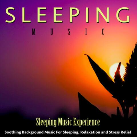 Sleeping Music Experience
