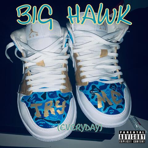 Big Hawks