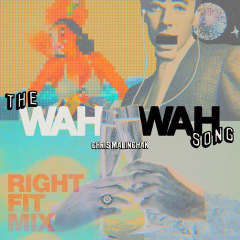 The Wah Wah Song album art