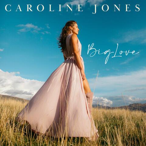 Big Love album art
